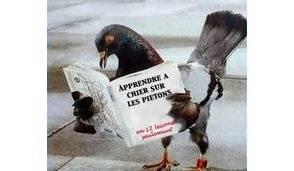 Se d barrasser des pigeons libertalia - Se debarrasser des pigeons ...