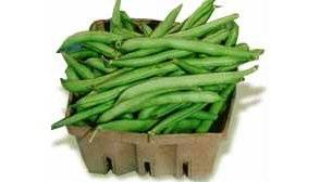 Le haricot vert libertalia - Variete de haricot vert ...
